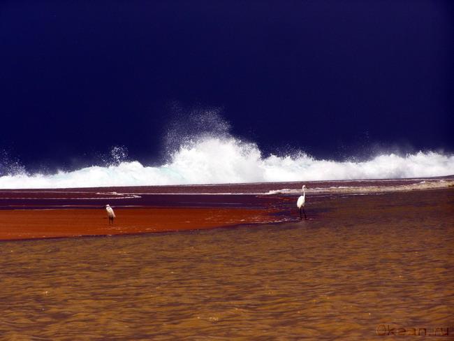 Океаническая феерия