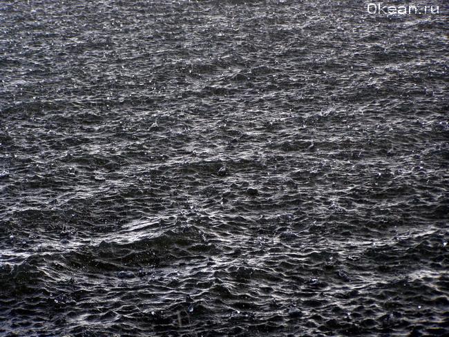 Дождь на океане