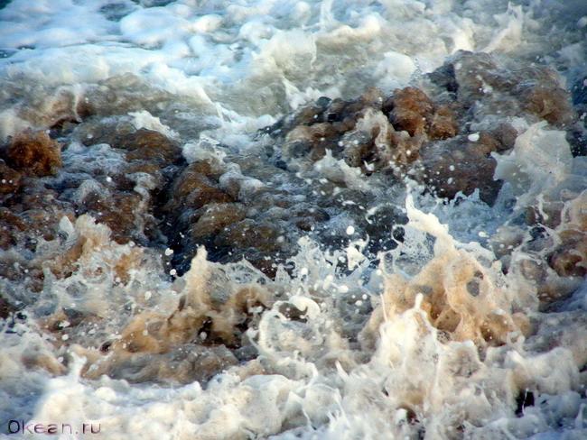 Пахтание молочного Океана