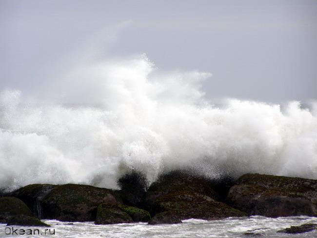 Колесница Нептуна